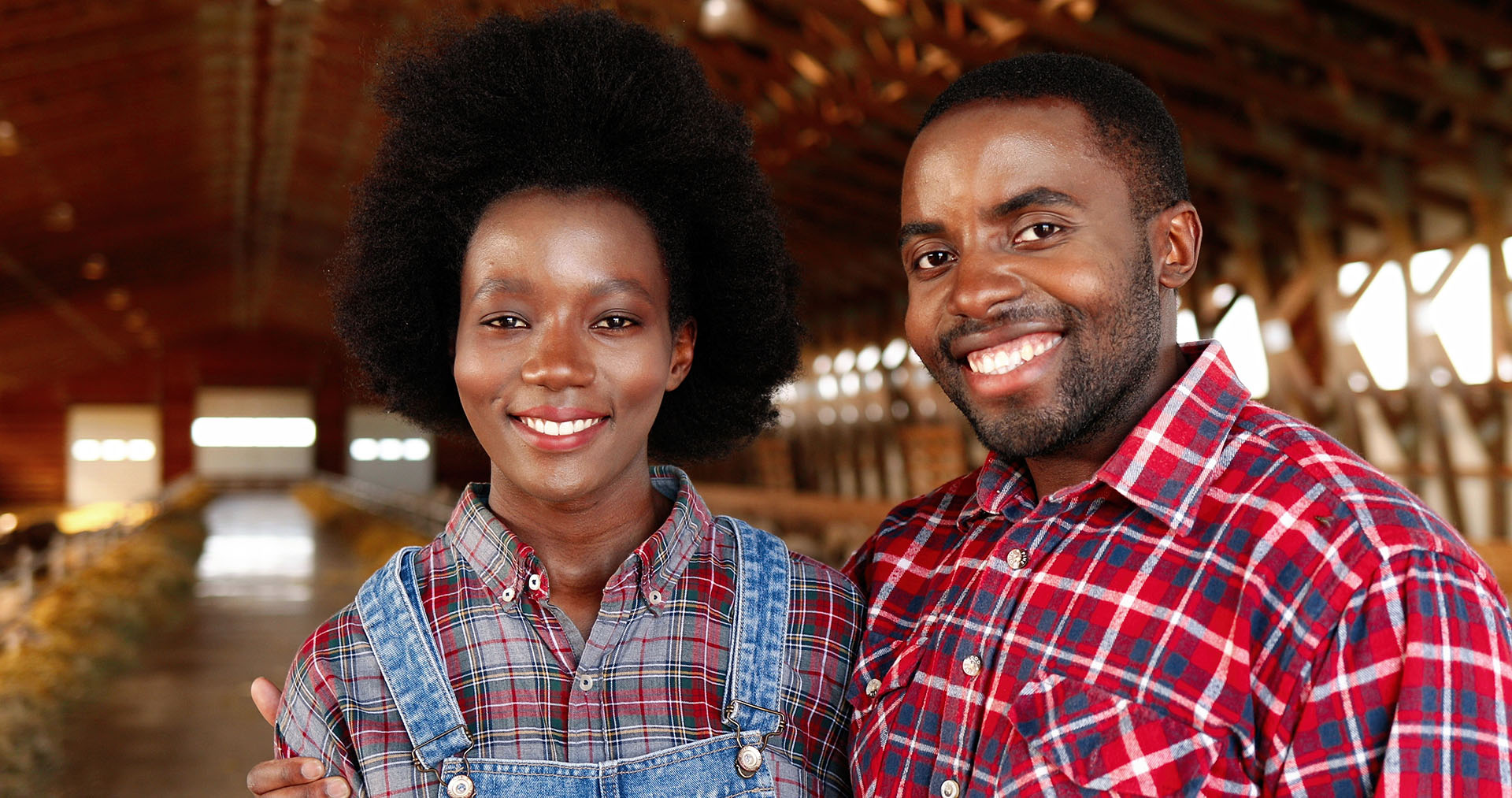 Portrait of happy African American young couple of farmers standing together in hugs in sheep farm shed. Beautiful woman and handsome man hugging in stable. Dolly shot. Male and female joyful workers.
